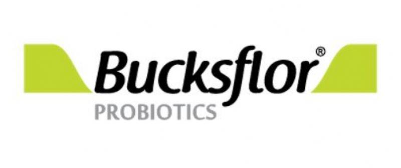 Bucksflor Probiyotik Takviyeleri