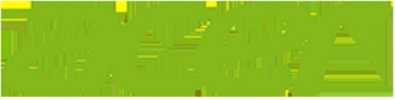 Acer Teknik Servisi